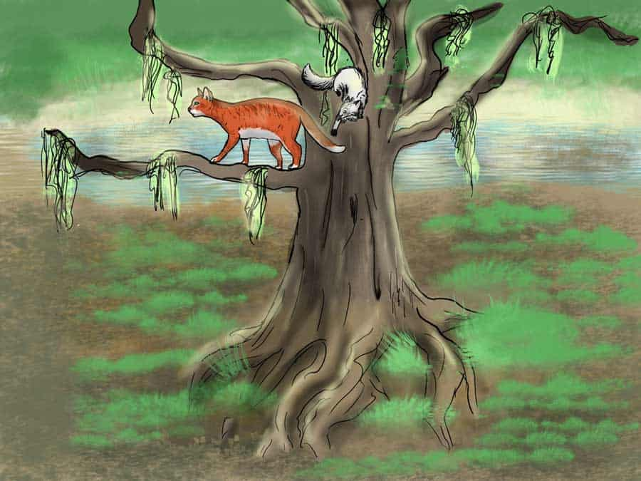 Illustration of Cats in a tree with hanging moss